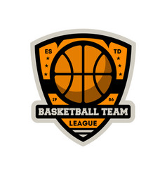 basketball team vintage isolated label vector image vector image