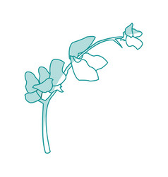Blue silhouette image flower exotic orchid branch vector