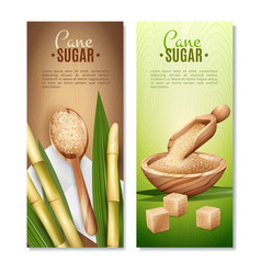 Cane sugar banners set vector