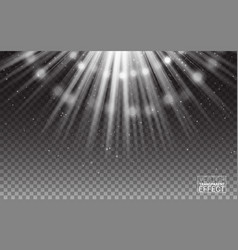White rays light flare abstract vector