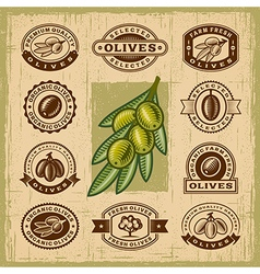 Vintage olive stamps set vector