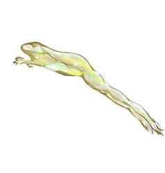 frog jumping vector image