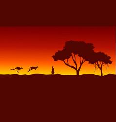 At sunrise kangaroo scenery silhouettes vector