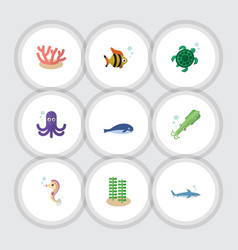 Flat icon sea set of octopus seaweed hippocampus vector