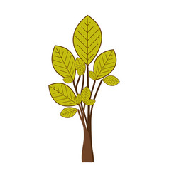 Green tree plant with few leaves vector