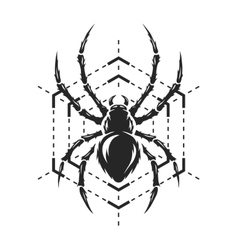 Spider and web monochrome symbol vector image vector image