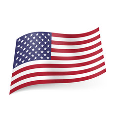 National flag of united states of america called vector