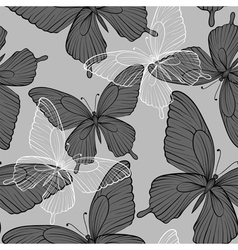 seamless background with flying butterflies vector image