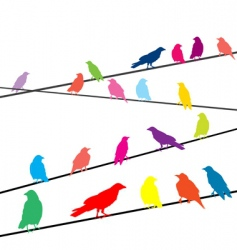 Crows on wires vector