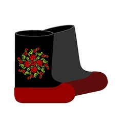 Russian felt boots Traditional winter warm shoes vector image