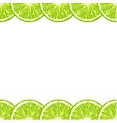 seamless decorative horizontal border of lime vector image