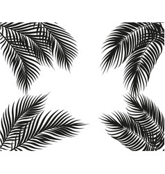 Tropical black and white palm leaves on four sides vector