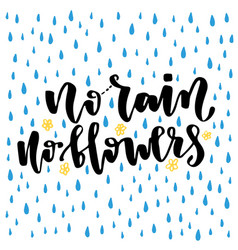 Hand lettering no rain no flowers typography for vector