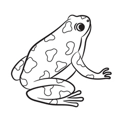 Outlined poison-dart frog vector