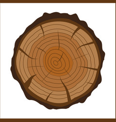 Cross section of tree stump or trunk wood cut vector