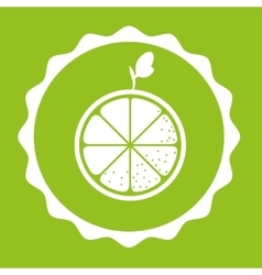 Healthy food and fruits lifestyle vector