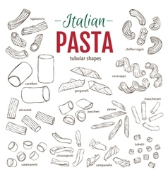 Set of hand drawn italian pasta tubular shapes vector