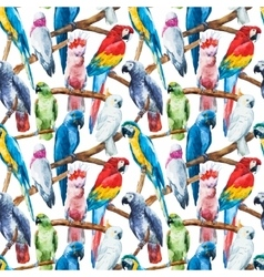 Watercolor parrot pattern vector image vector image