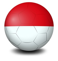 A soccer ball with the indonesian flag vector