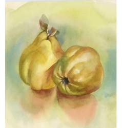 Watercolor ripe apples background vector image vector image