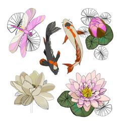 Colorful drawing lotus set vector
