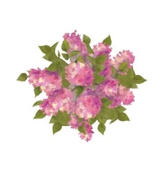 Top view bouquet of lilac vector