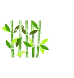 Hand painted bamboo stems and leaves vector