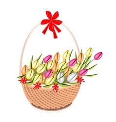 A Brown Basket of Beautiful Fresh Tulip vector image vector image