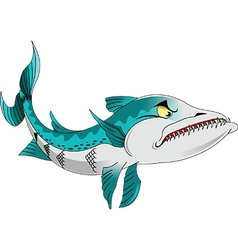 barracuda cartoon vector image vector image
