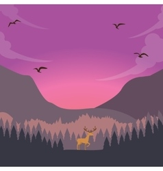 nature scene deer on sunset sunrise in forest vector image vector image