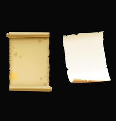 scrolls vector image vector image