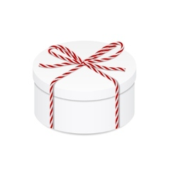 Present box with red twine bow vector image