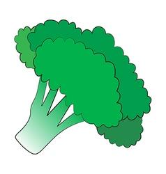 Broccoli vector