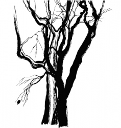 old trees vector image