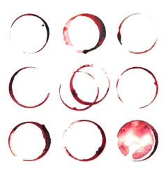 Wine stains vector image