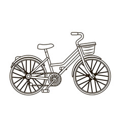 a red bicycle with wheels and basket the eco vector image vector image