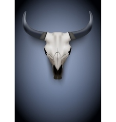 Animal Skull Poster vector image