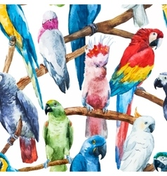 Watercolor parrot pattern vector image