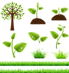 Grass and trees vector image