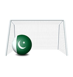 A soccer ball from Pakistan vector image vector image