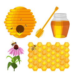 set of beekeeping elements beehive vector image vector image