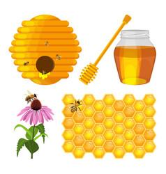 Set of beekeeping elements beehive vector