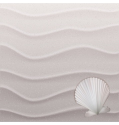 Marine background with seashell on sand vector