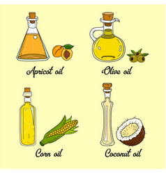 4 cooking oils in cute sketchy bottles vector