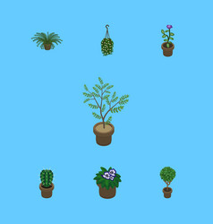 Isometric houseplant set of blossom plant fern vector