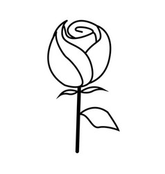 Thin line rose icon vector