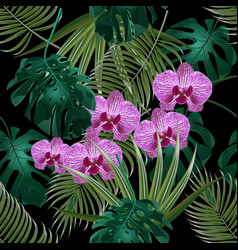 Jungle green tropical leaf orchid flowers and vector