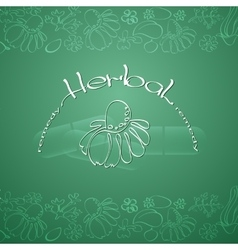 Herbal remedy theme vector