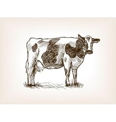 Cow hand drawn sketch vector