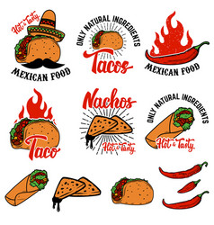 Mexican food nachos burrito taco design elements vector